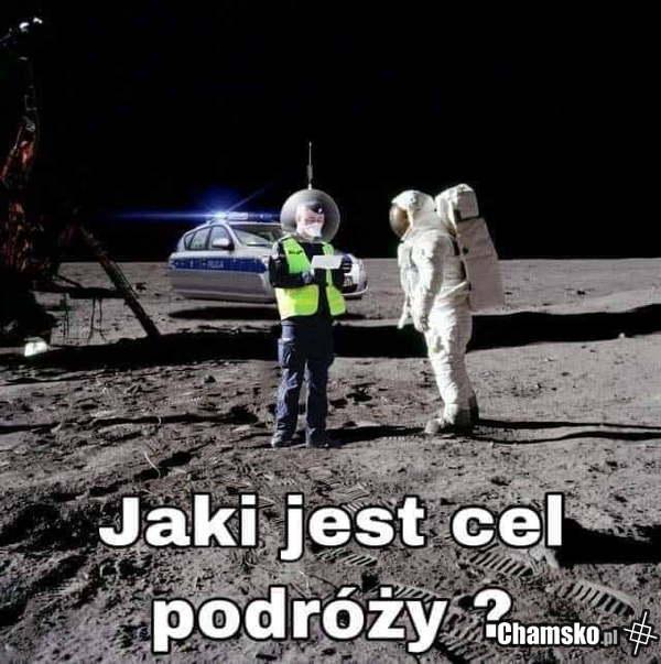 [Obrazek: 0_1_100664_Cel_podrozy_przez_pluszowymis.jpg]