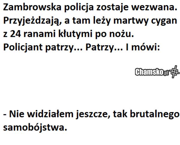 Zambrów