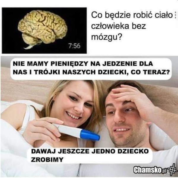 0_1_101916_Genialny_pomysl_przez_pluszow