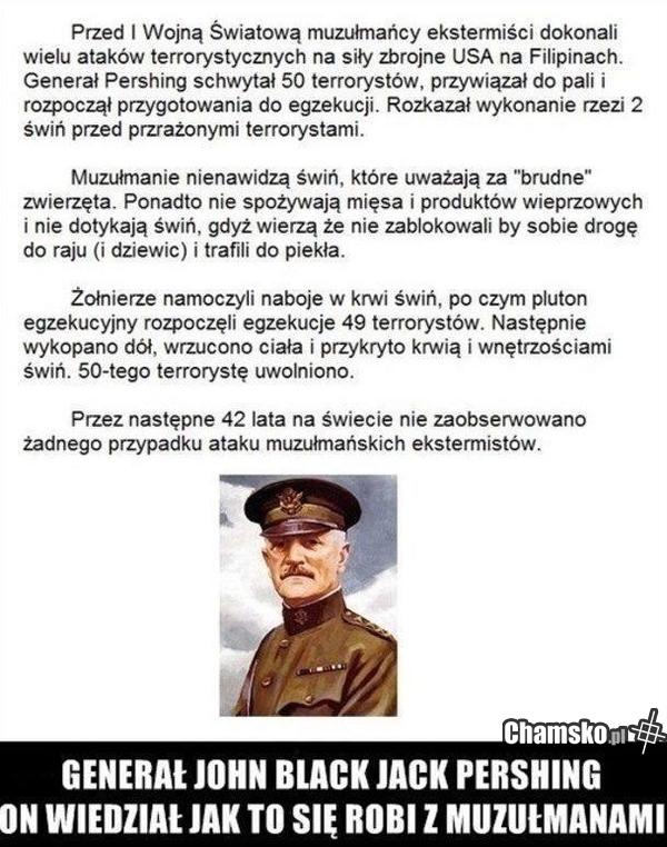 [Obrazek: 0_1_57744_Zdolny_general_przez_daga88.jpg]