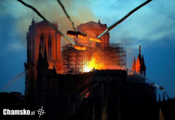 Kiełbaski paryskie