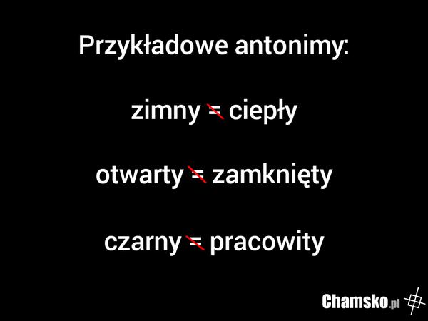 Antonimy