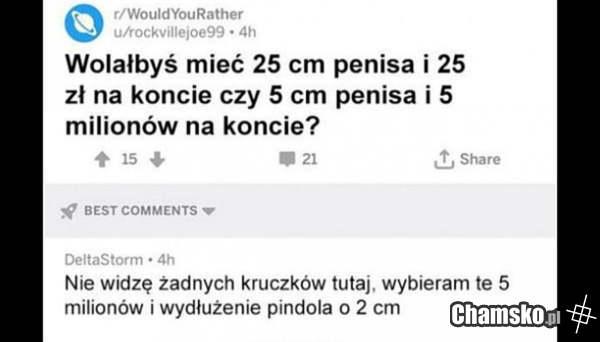 Kasa czy penis?